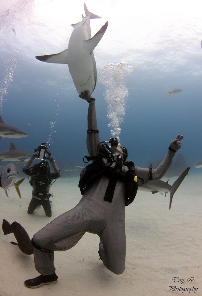 Shark Whispering in the Grand Bahamas