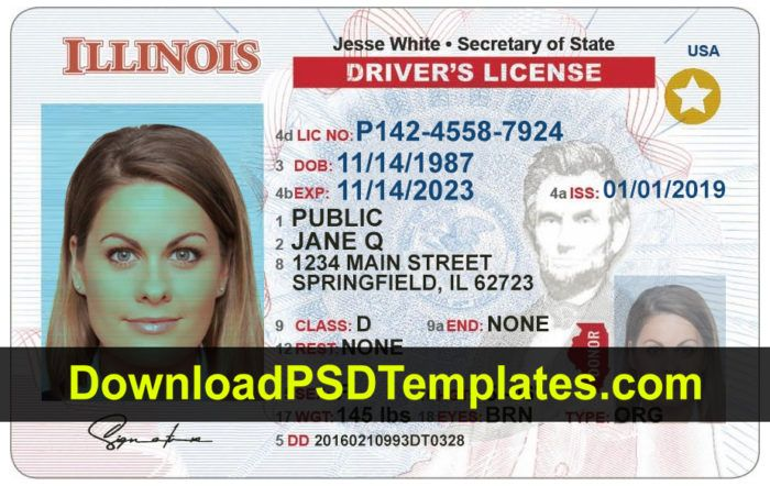 This Is Template Drivers License State New York File Photoshop You Can Change Name Address Birth License Number Drivers License Id Card Template Card Template