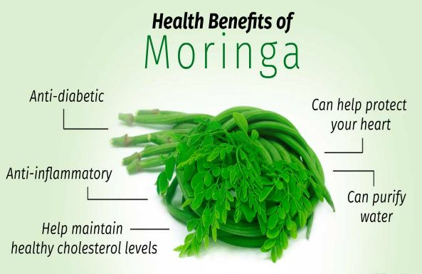 This nature given medicine is called Moringa Oleifera and is a native plant of South Asia. It has been part of their homemade medicine for a long time