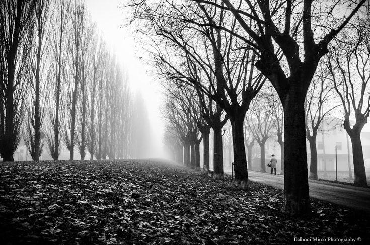 Alone in Autumn by Mirco Balboni