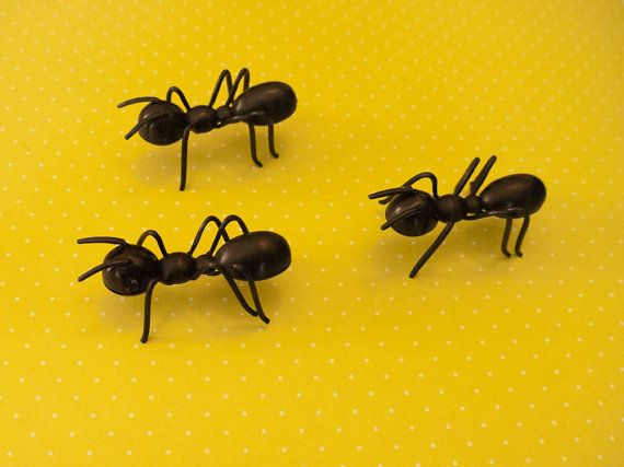 132 best Fondant : Insects and Bugs images on Pinterest