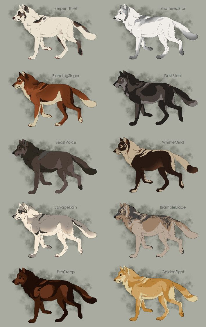Semi-Realistic Wolf Adoptables Set 6 - CLOSED by Therbis on DeviantArt