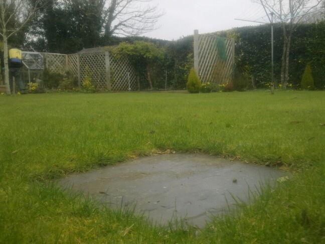 Lawn b4 treatments