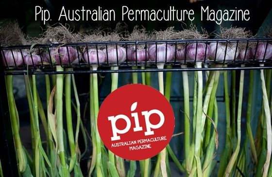 Help get Pip: Permaculture Magazine's first edition printed