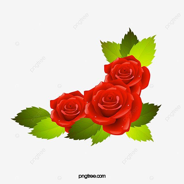 Vector De Rosas Rojas Rosa Rojo Vector Png Y Psd Para Descargar Gratis Pngtree In 2020 Rose Illustration Red Roses Red Rose Petals
