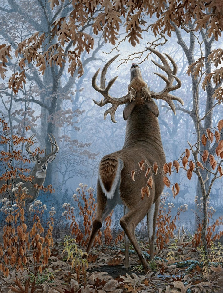 Big Timber Bucks by Larry Zach. One of my favorite paintings. Can't help but admire a piece of art with a story.