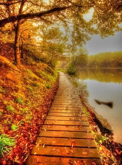 New Wonderful Photos: Autumn Evening