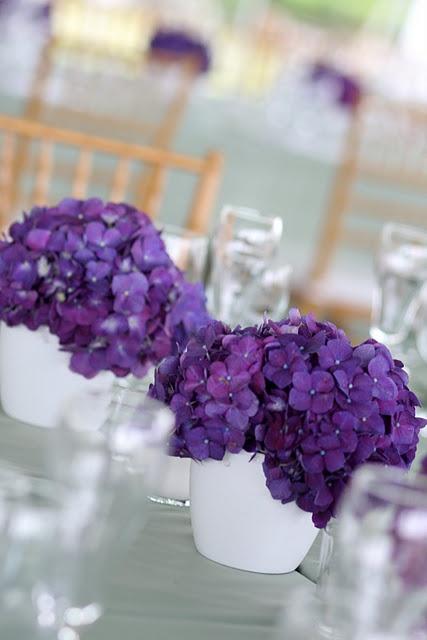 Hydrangeas!  Have always loved them!White Flower, Mint Green, Purple Hydrangeas, Boca Grand, Aisle Flower, Flower Decor, Destinations Wedding, White Vases, Purple Flower