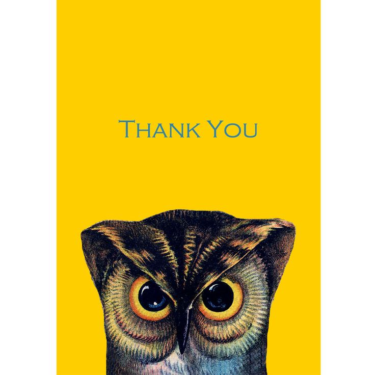 Say thank you with this Wise Old Owl. As Ma Pheasant always tells us... Good manners cost nothing!