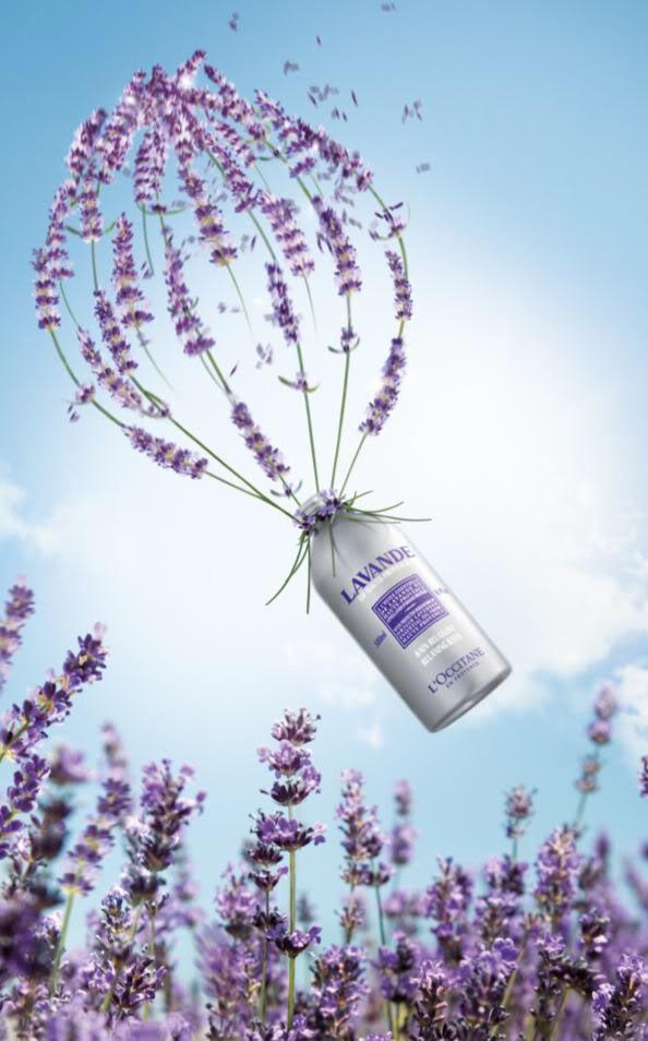 L'Occitane lavender