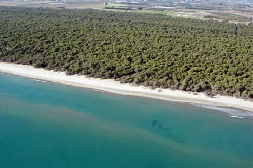 Basilicata mare: la costa jonica, mitica per i bambini. http://www.familygo.eu/viaggiare_con_i_bambini/basilicata/basilicata_mare_costa_jonica_per_bambini.html