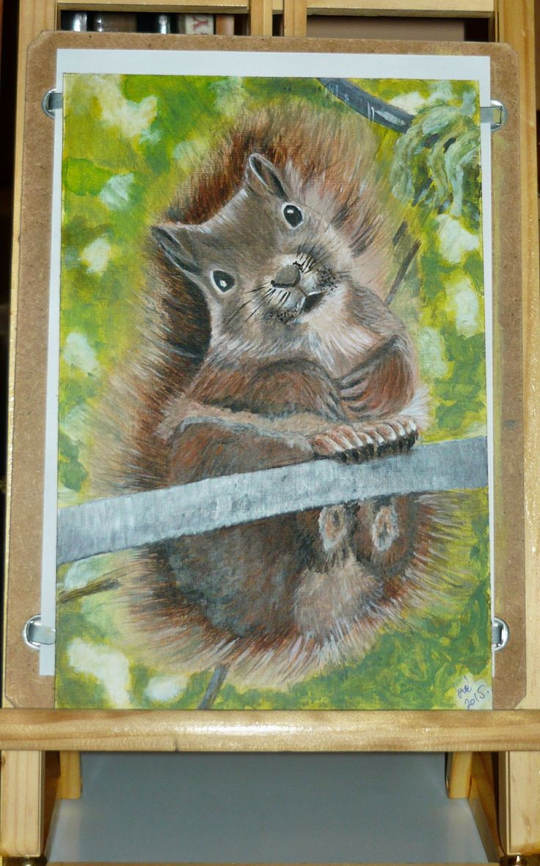created by: Kovácsné Sz. Éva - Squirrel, acrylic, 20x30 cm wallboard