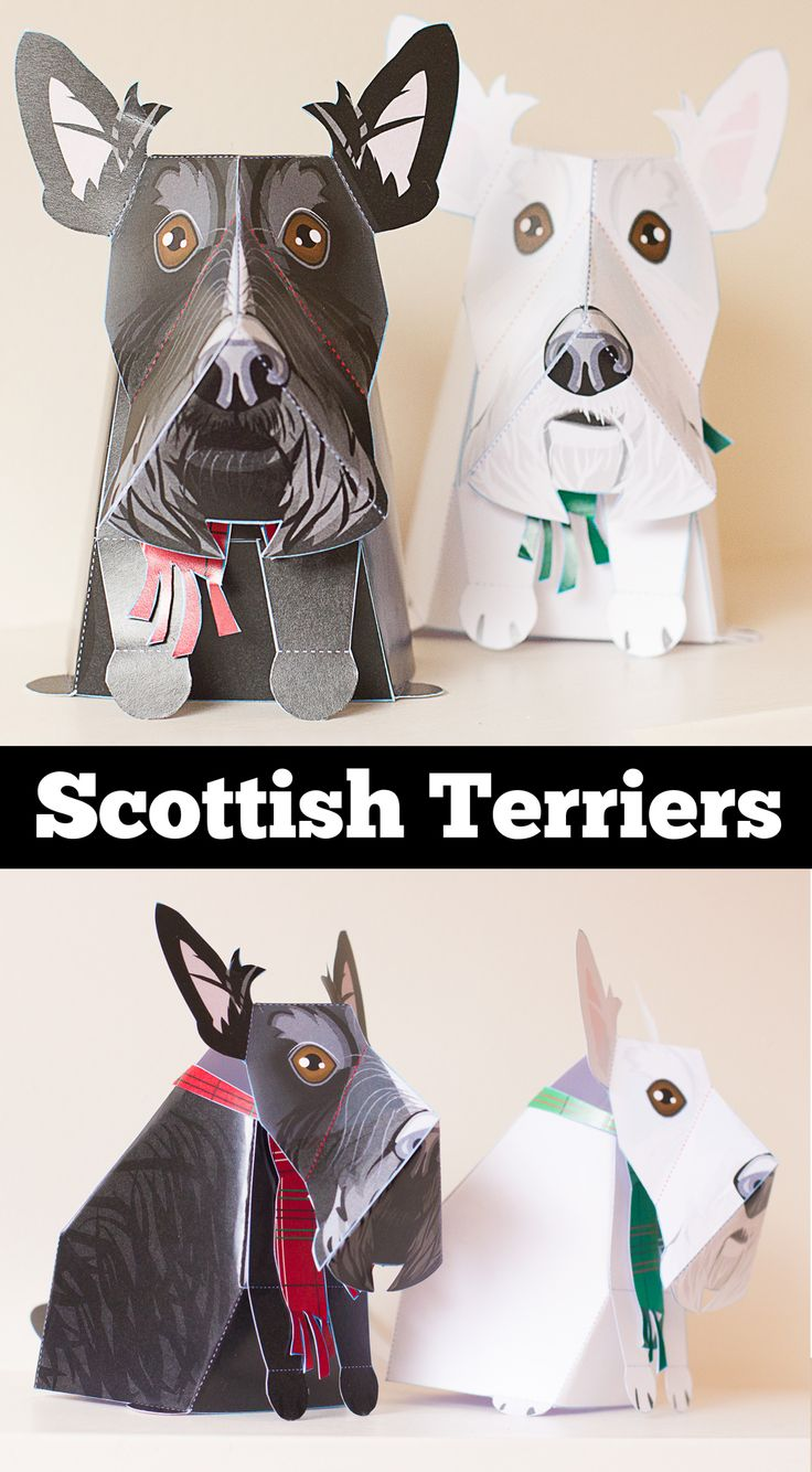 Cute printable Scottish Terriers DIY paper craft to make with kids or yourself! They come with tartan patterned scarfs for them to wear. Great as toys or decor. These Scotty dog templates are super easy to make! Give to friends, play with them (they work as puppets too) and then display on a shelf, or have as decor. Perfect for a craft hobbyist or a Scottish terrier obsessed fan!