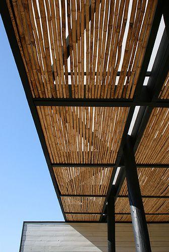 Casa Cristian Biehl in Chile by Daniel Rojo Arquitecto Photo