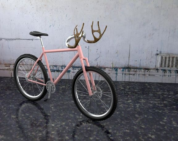 des Förster Frau ihr Fahrrad!