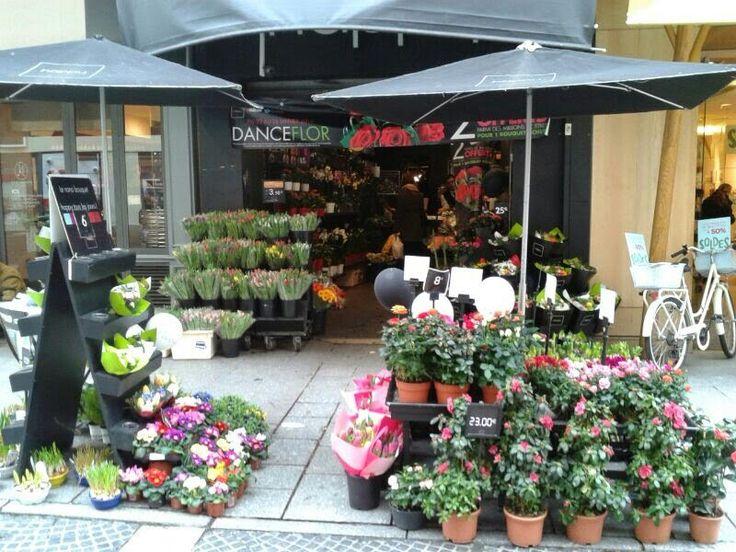 Parigi fiori