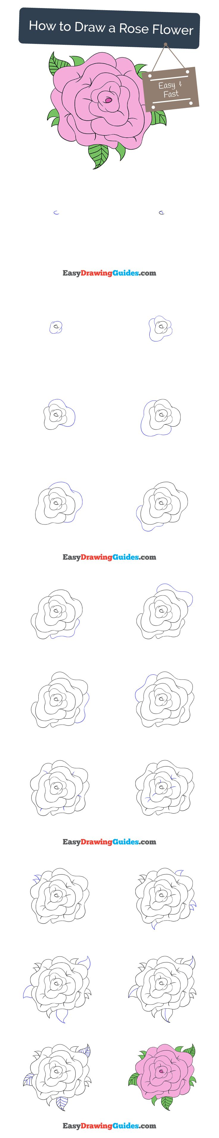 Learn How To Draw A Rose Flower: Easy Stepbystep Drawing Tutorial
