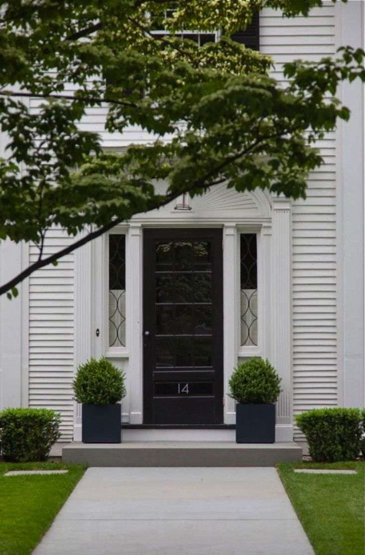 Boxwood 8 Ways To Use Evergreens To Create Curb Appeal