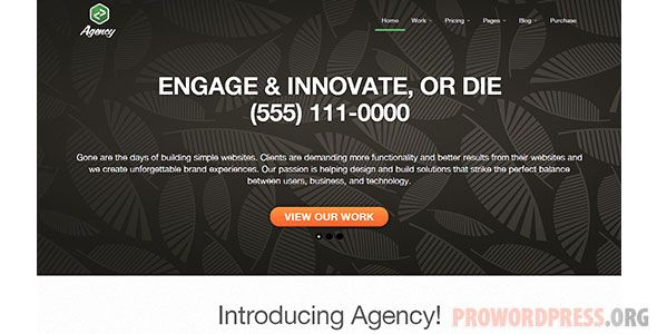 Agency Wordpress Theme Download