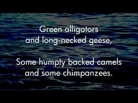 The Unicorn Song - The Irish Rovers - Lyrics ,