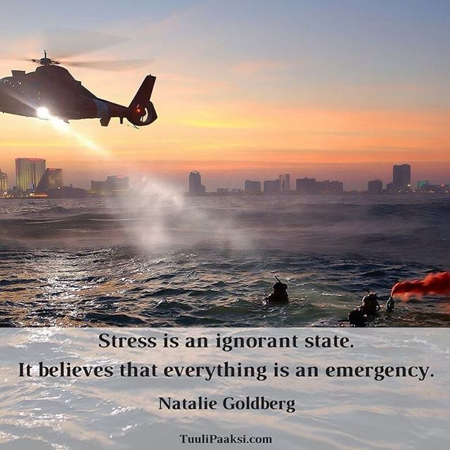 #Stress is an #ignorant state. It believes that everything is an #emergency. Natalie Goldberg #stressmanagement #quote