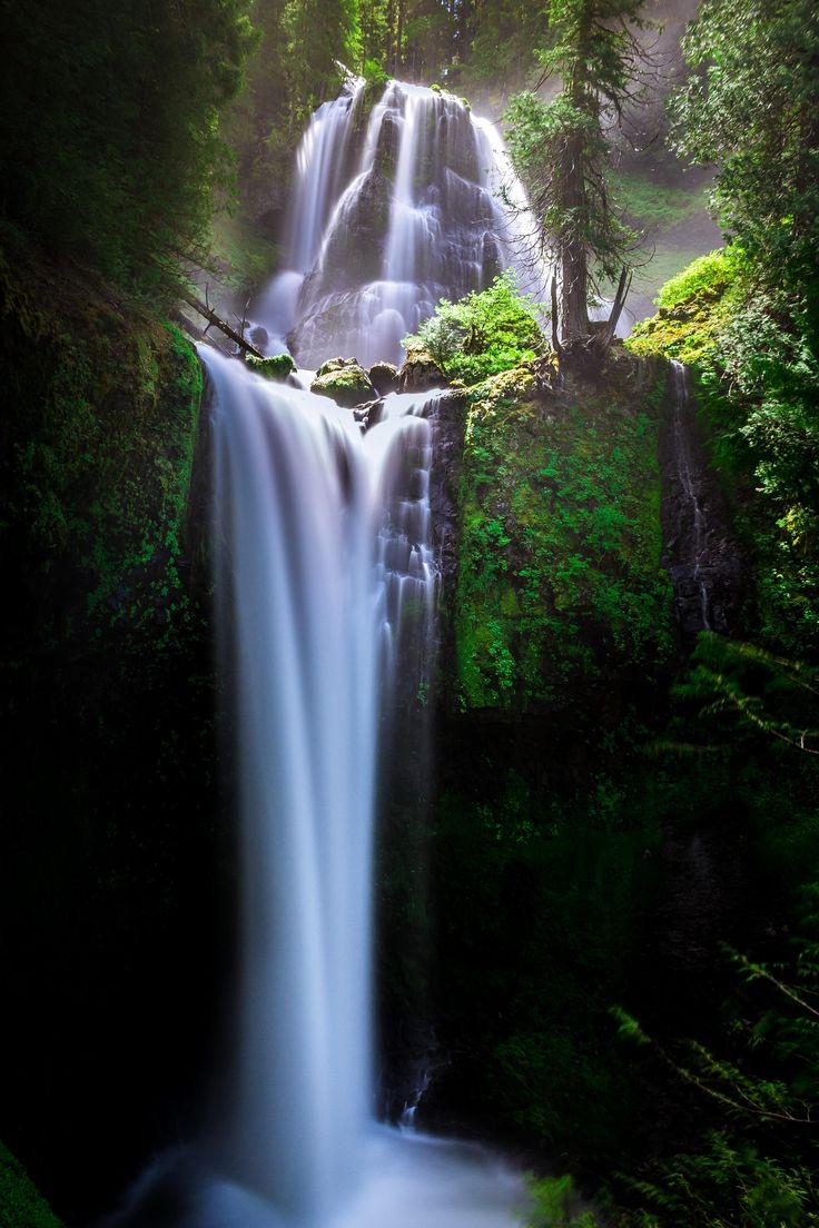 Falls Creek Falls WA (OC) [2848x4272]