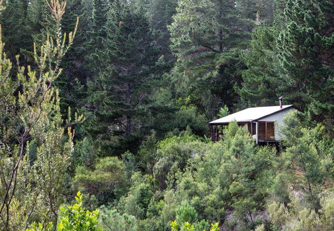 Forest Valley Cottages in Knysna, Garden Route