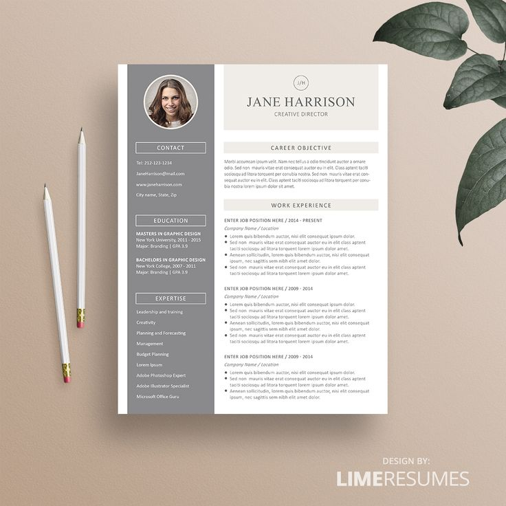 Looking for a great professionally designed resume