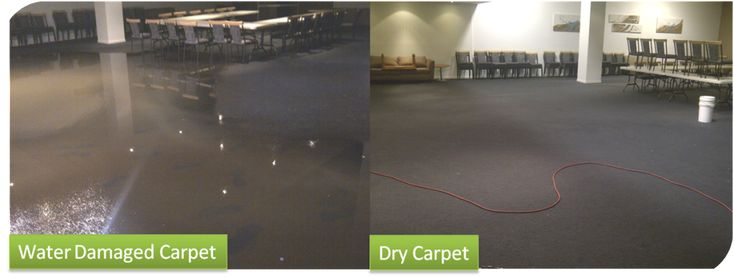Carpet Water Damage Melbourne http://www.capitalfacilityservices.com.au/  Capital Facility Services is Melbourne's professional company providing 24/7 emergency water damage restoration, water damaged carpet cleaning, carpet repair and re-installation flood restoration, wet carpet cleaning, wet carpet drying services and structural drying to help salvage your carpets as well as your property.
