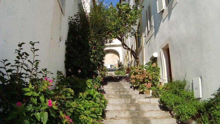 Descendo a Rua do Arco, em direcção à Praça Alexandre Herculano