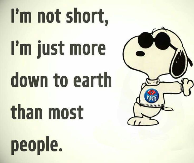 Snoopy - ''I'm not short, I'm just more down to earth than most people.'' (736×621) (Peanuts)
