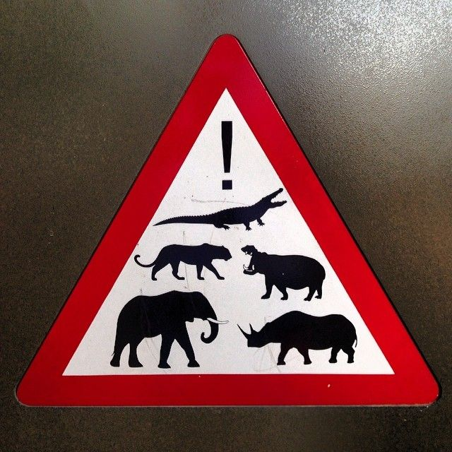 Traffic Sign #SouthAfrica