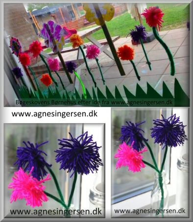 asters5