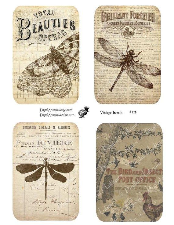 Descargar etiquetas insectos Vintage sepia por DigitalAntiques                                                                                                                                                      Más