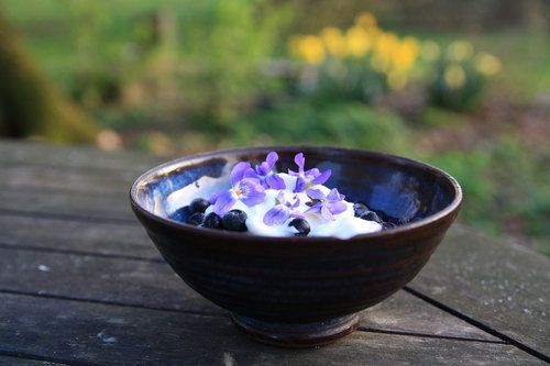 Kvítky fialek - lahodná, voňavá a půvabná ozdoba ovocného dezertu