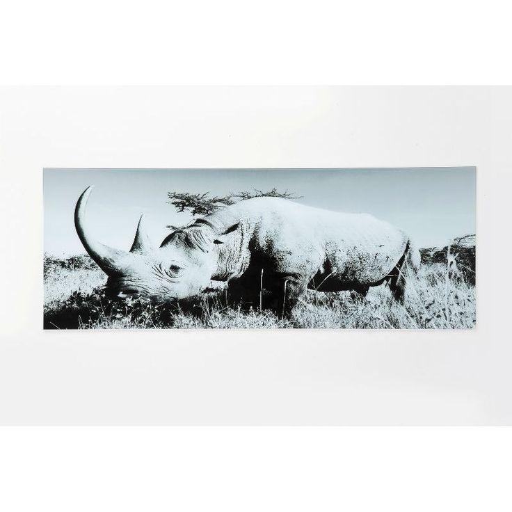 Πίνακας Glass Rhino