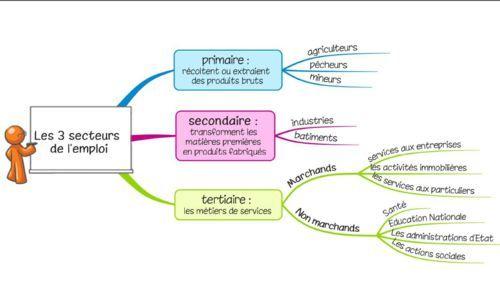 Les différents secteurs d'activités + secteur tertiaire