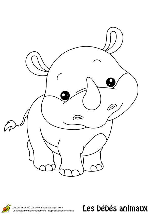 Coloriage d'un adorable bébé rhinocéros - Hugolescargot.com