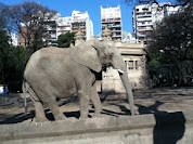 Buenos Aires Zoo, Palermo - Buenos Aires, Argentina