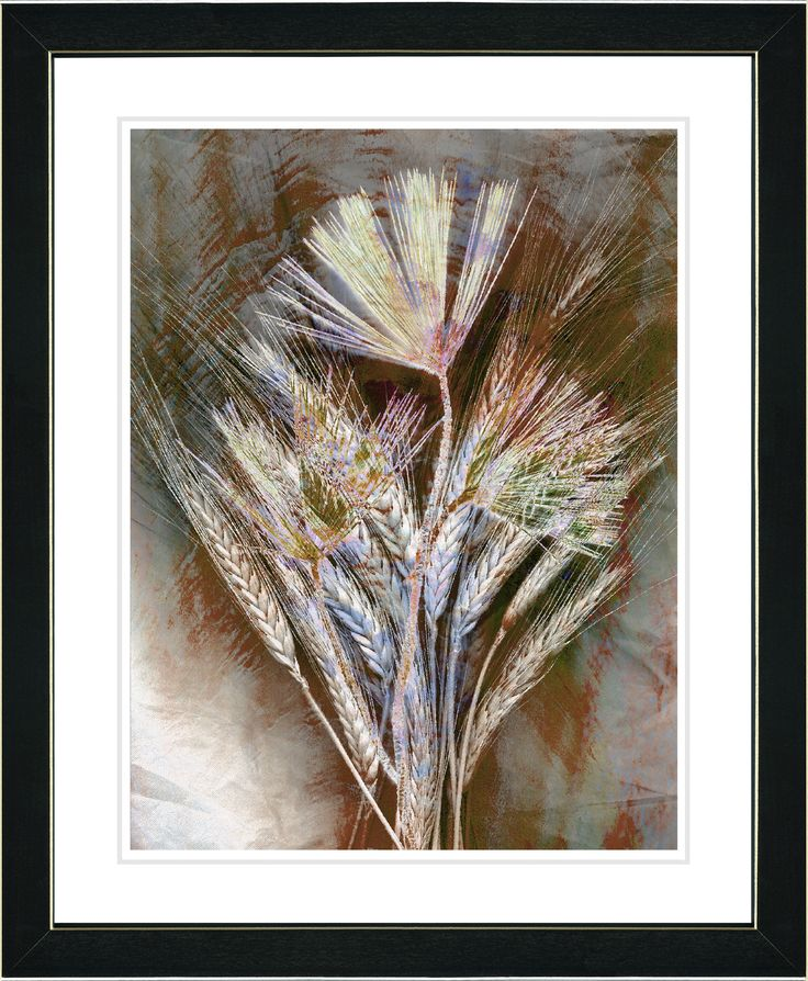 Harvest Floral - Amber by Zhee Singer Framed Graphic Art in Brown