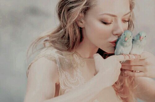 Open w/ Riley} I kiss the birds lightly, smiling as they tweet, perching on my fingers. I loved nature so much. Animals over people or other Fae, everything. I was so lost in their tune that I don't notice whomever comes up next to me, and promptly shriek when I hear them talk.