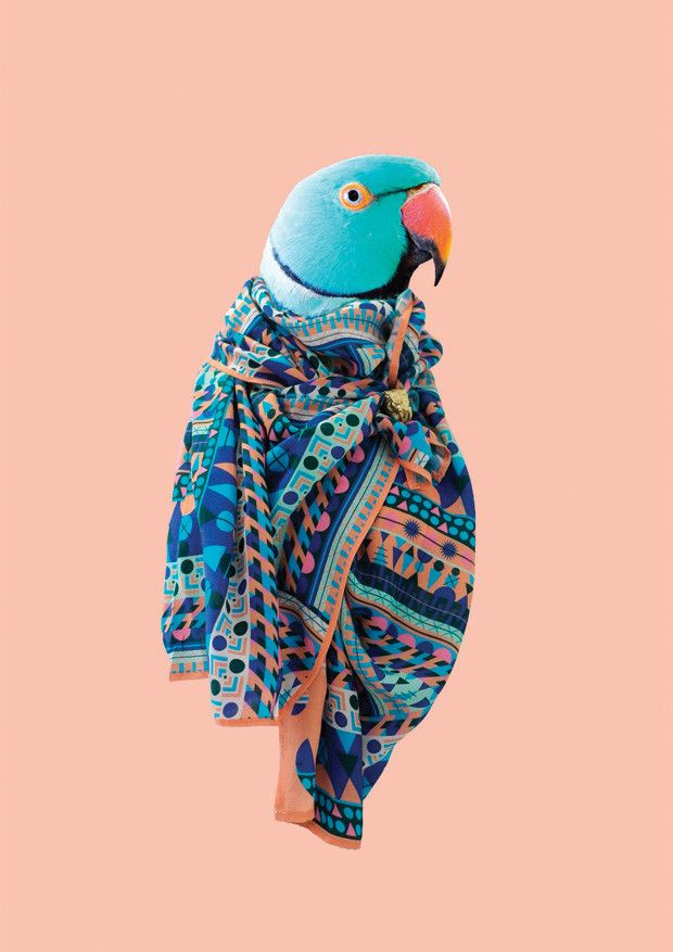 <p>The UK-based boutique, Blazon, debuts a Fall scarf collection with a Spring flair. And not without toucans.  The designer, Natasha Coverdale has a background in graphic design and branding an