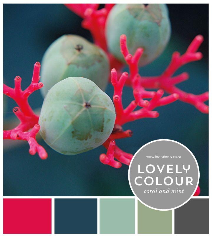 Colour Lover | Coral & Mint