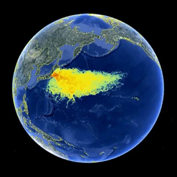 58 best fukushima images on pinterest fukushima west for Pacific ocean radiation fish