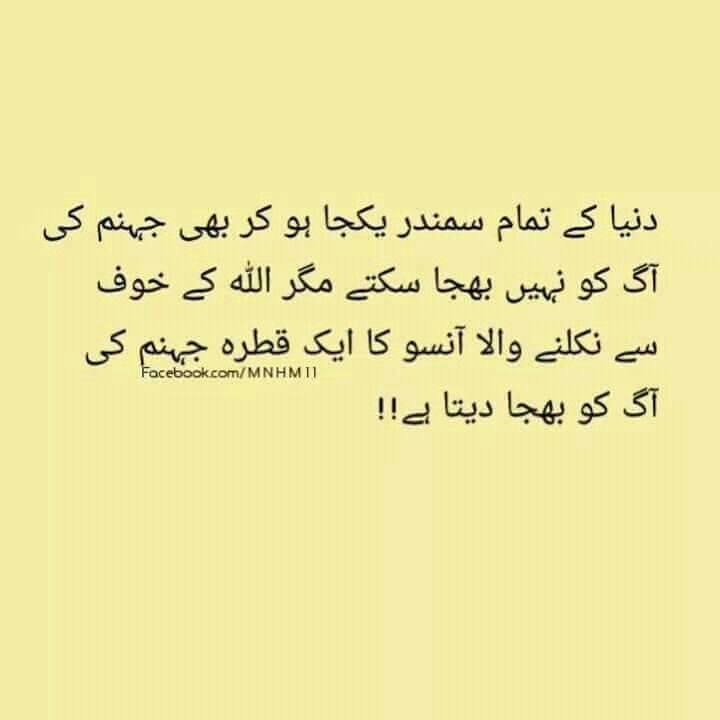 Krny Stock Quote 13 Best Aqwaal E Zarreen Images On Pinterest  Allah A Quotes And