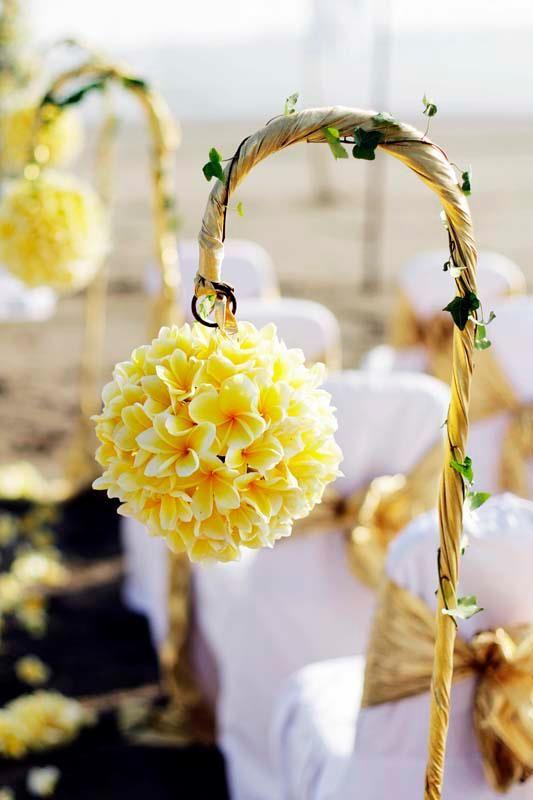 The 25+ best Frangipani wedding ideas on Pinterest ...