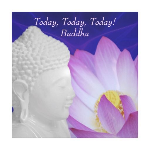 Buddha Today today today