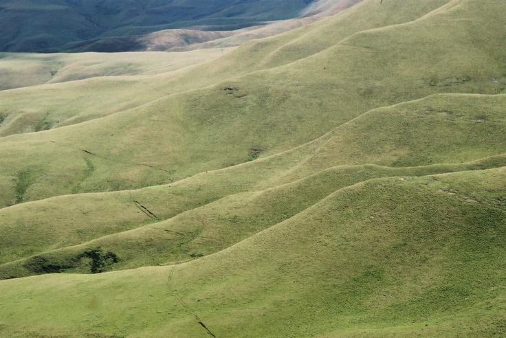 South-African landscape
