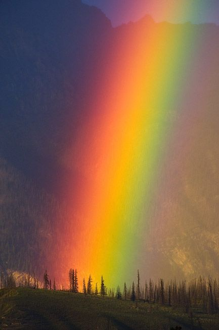 Rainbow. Yellowhead Highway 16 Alberta Canada.