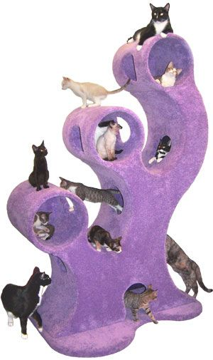 Cosmic Tree Deluxe Condo - CatsPlay.com - Fun furniture, condos and climbing gyms for cats and kittens.